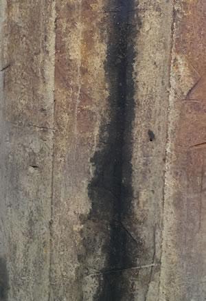 texture | AllegraNoir.com